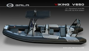 VIKING Cruisers: V650, V650F (Fishing)